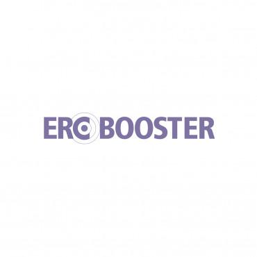 ERC Booster