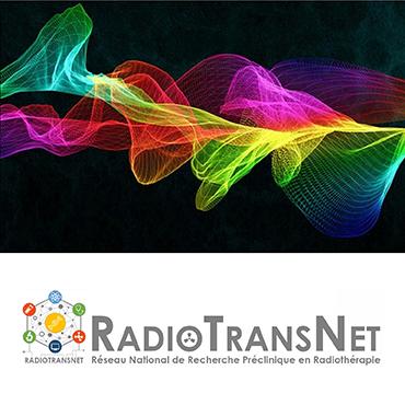 RADIOTRANSNET : un projet de structuration de la recherche préclinique en radiothérapie en France, labellisé par l'INCa