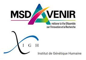 MSD Avenir_IGH