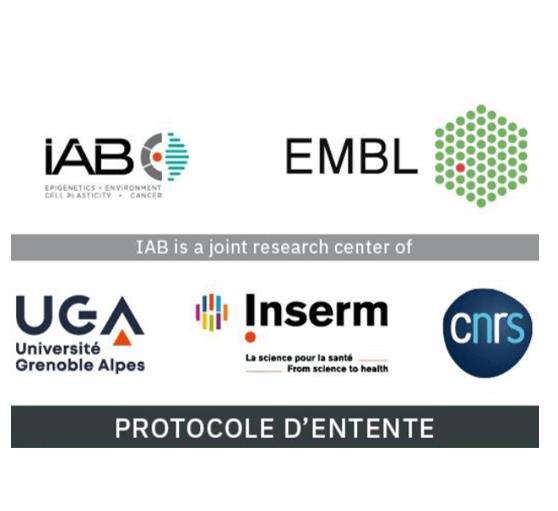 Des molécules aux écosystèmes :<br>l'EMBL et l'IAB signent un protocole d'entente
